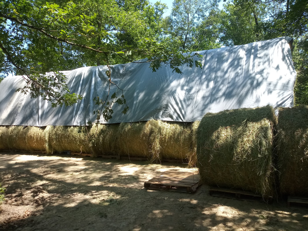 Covering hay with a 23x48' tarp